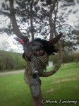 Gobbling-Turkey-On-Roost