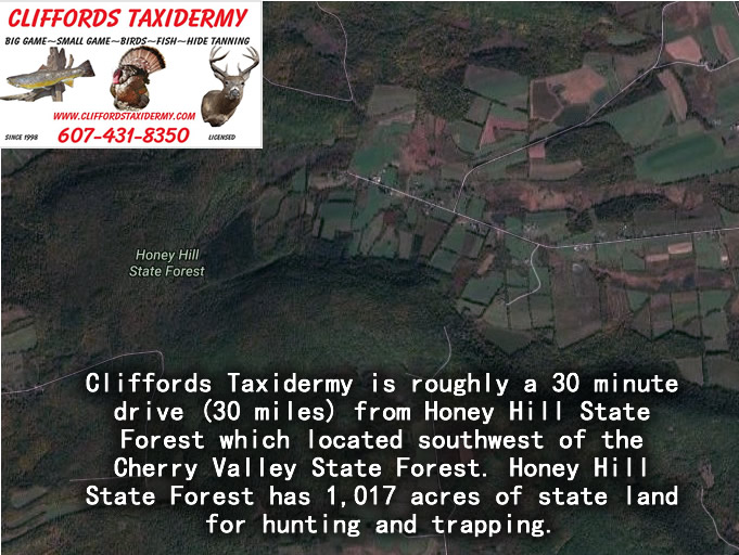 Honey Hill State Forest Map