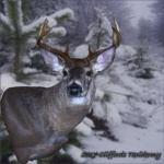 Wall Pedestal Taxidermy Whitetail Deer